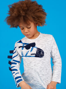 Graues Heidekraut-T-Shirt mit Zebra-Motiv für Jungen LOBLETEE3 / 21S902J2TMLJ920