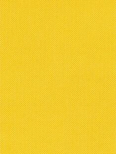Baby Junge gelber Baumwollkapuzenpulli LUJOGIL1 / 21SG1032GIL106